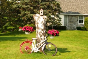 "An ""Acadian Bike"""