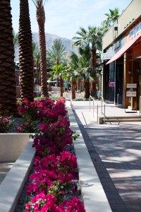 The Gardens Shopping Mall