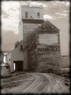 Grain elevator, Indian Head, SK
