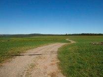 Field in NS