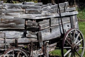 Old Wagon at Ellis Bird Farm