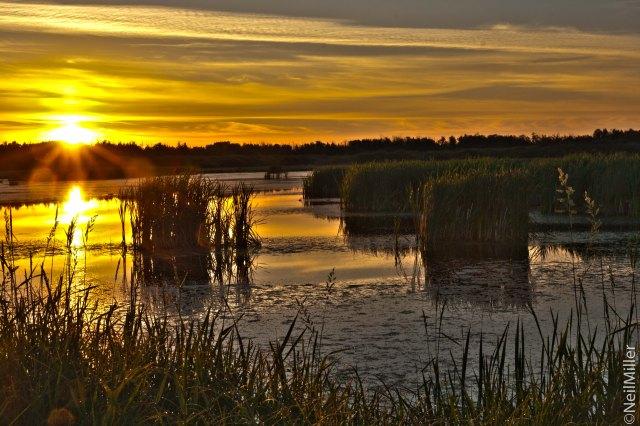 Sunrise at Lois Hole Provincial Park
