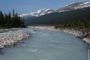 Robson River