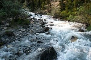 Toboggan creek