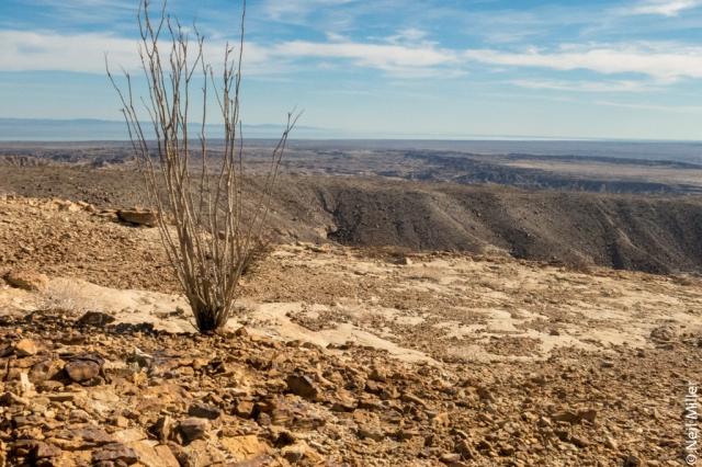 View towards Salton Sea