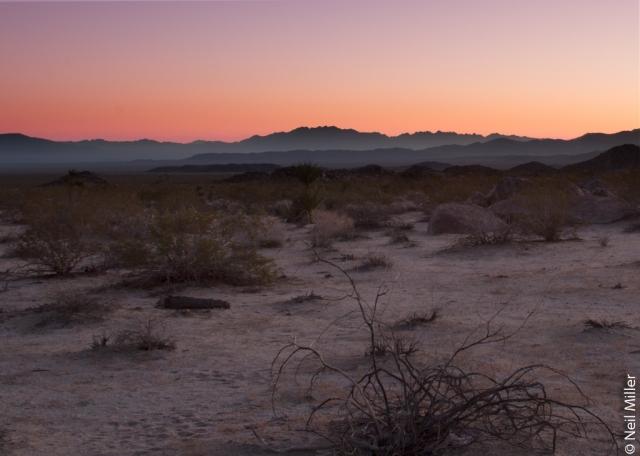 Sunrise - JTNP