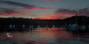 Sunset at Newcastle Island