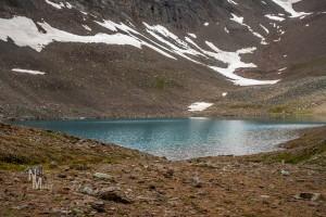 Curator Lake