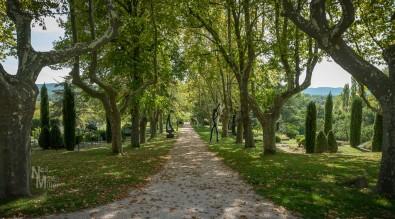 Ch. Vignelaure Gardens