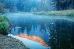 Fog over Merce River