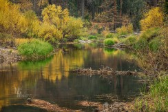 Merced River - Fall colors