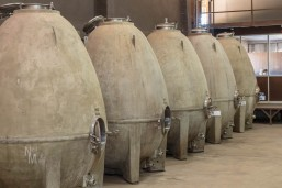 Concrete eggs for aging wine