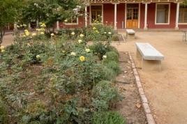 Vina La Rosa gardens